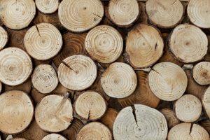 madeira cortada